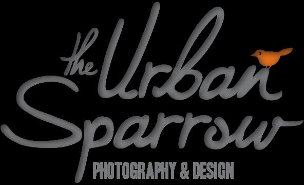 THE URBAN SPARROW